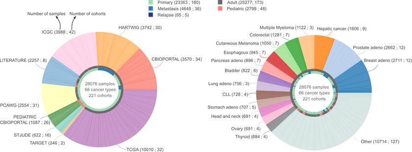 pie_charts_datasets-7