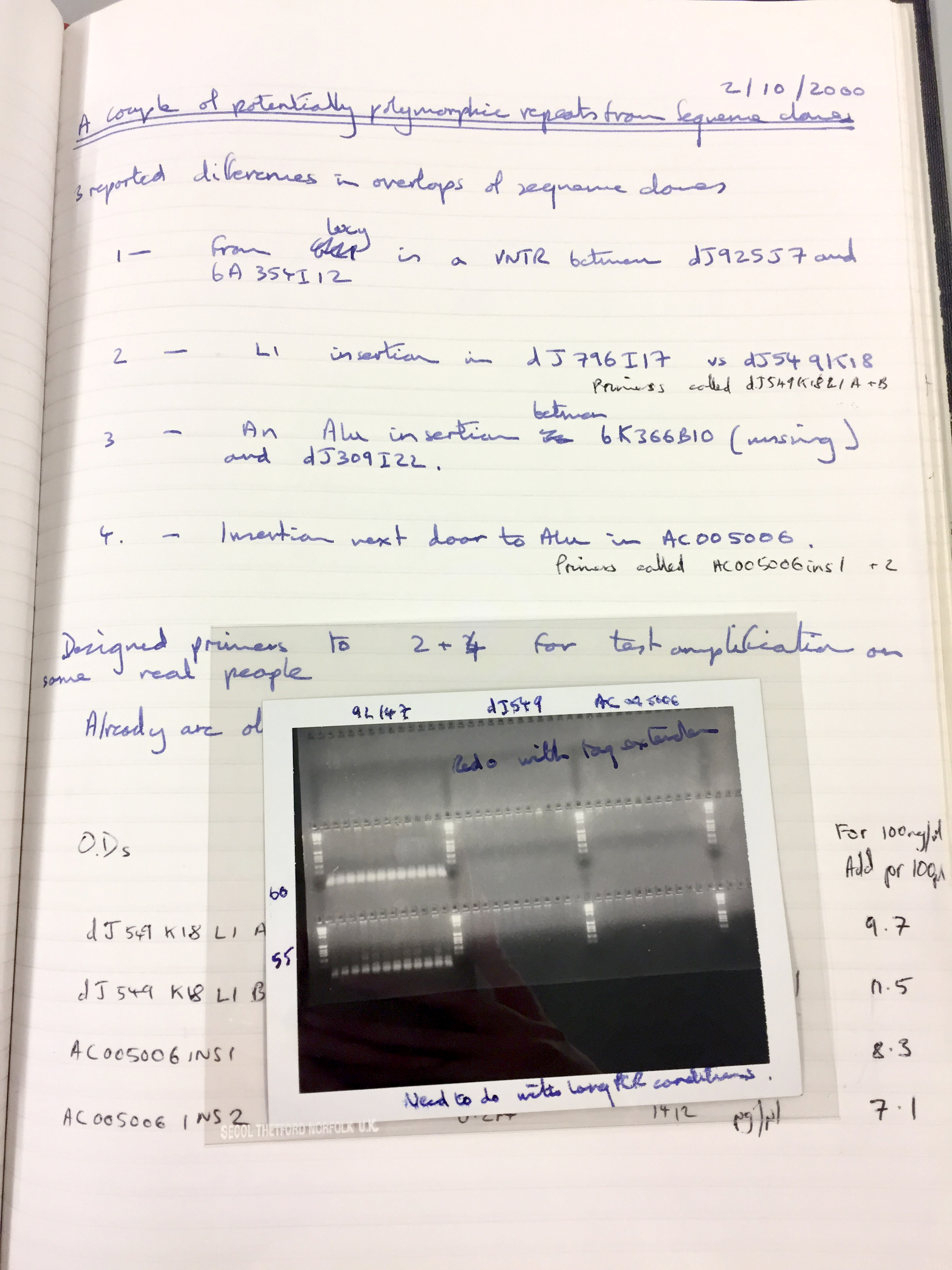 Single page from a laboratory notebook, dated 2/10/2000. It has notes in blue and black pen and an image of a gel.