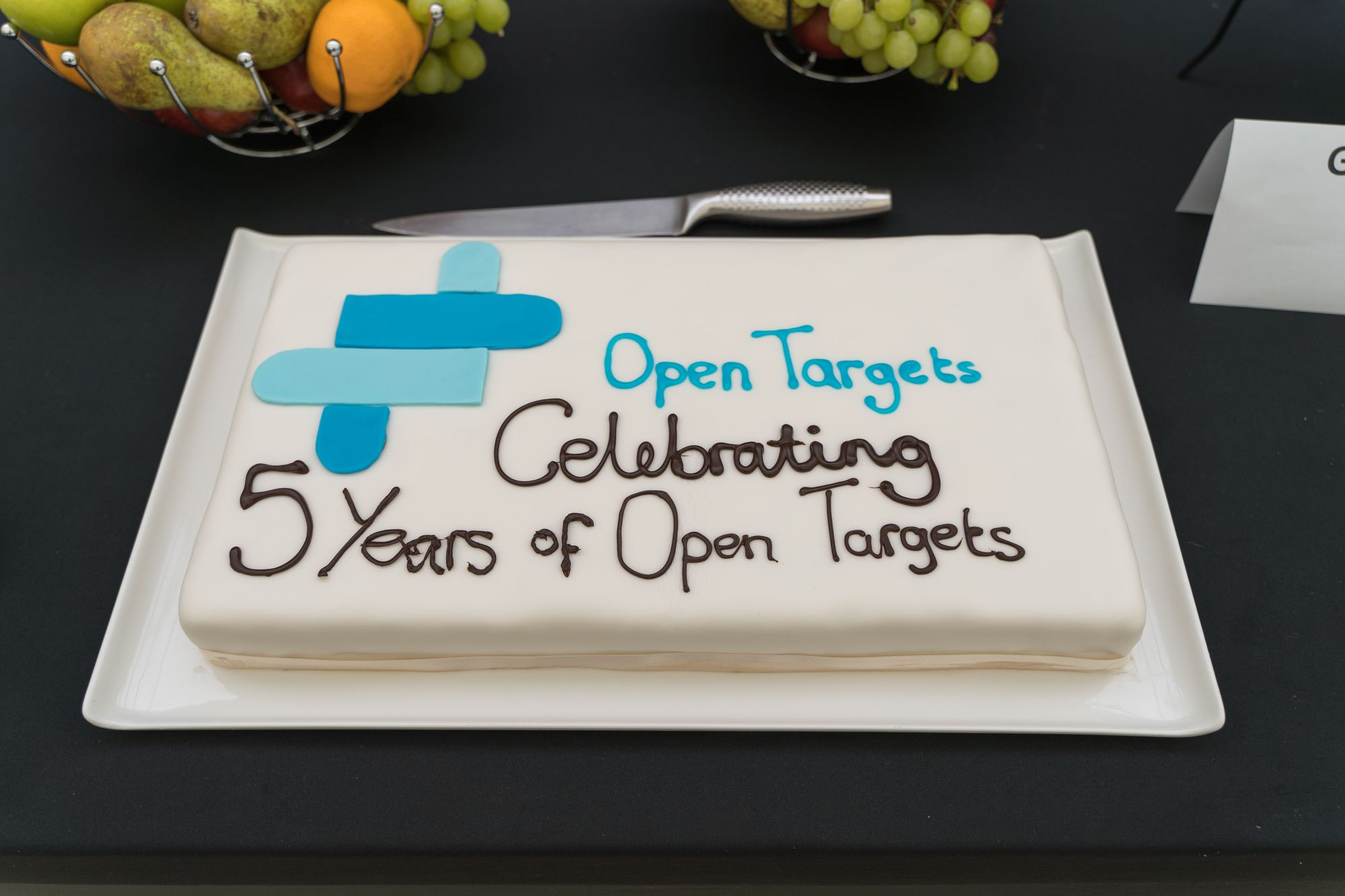 """White rectangular cake with blue and brown icing which reads: """"Open Targets Celebrating 5 years of Open Targets"""""""