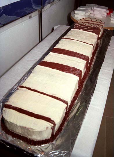 The cake itself, a long cake with white and brown icing representing a chromosome.